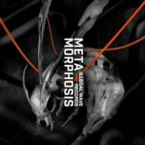Illegal wave Records METAMORPHOSIS